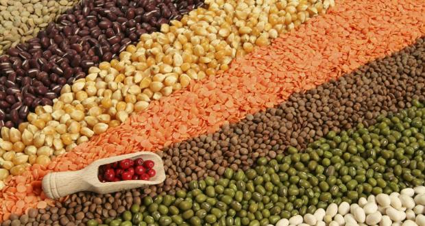 lentilles aliments sains